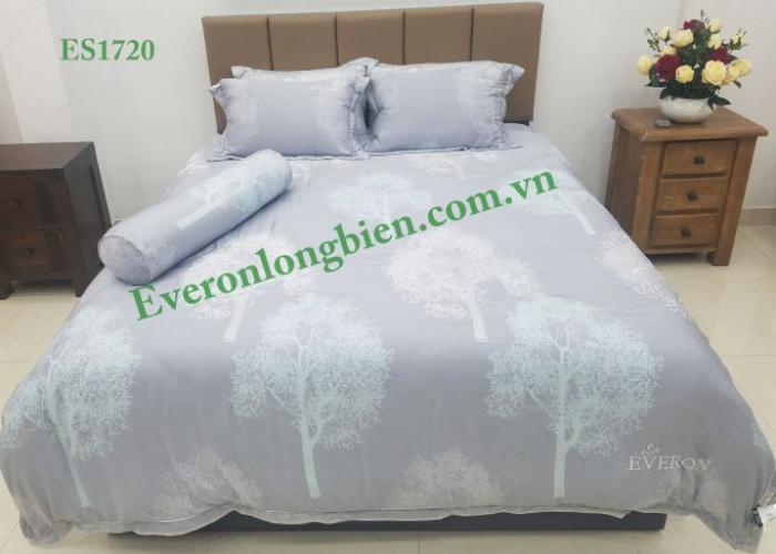Everon ES1720