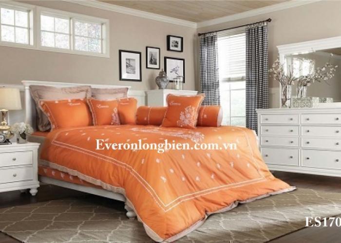 Everon ES1706