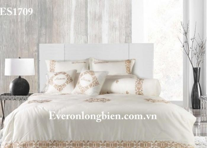Everon ES1709