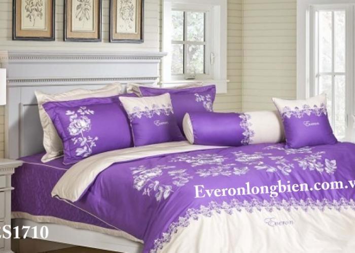 Everon ES1710
