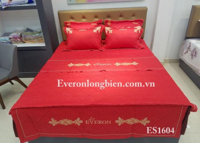 Everon ES1604