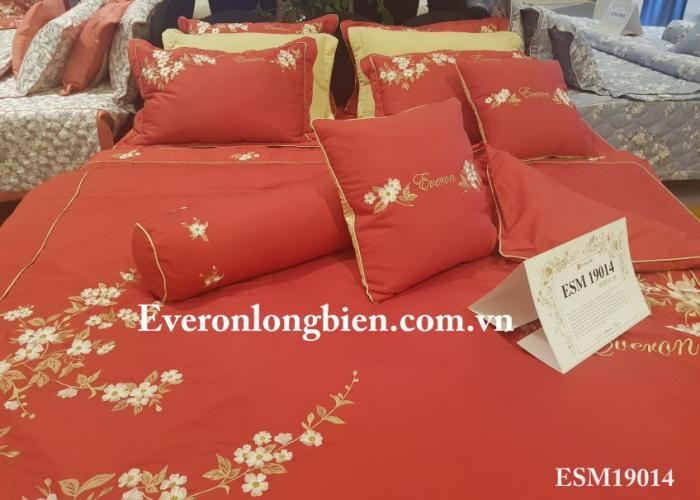 Everon ESM 19014