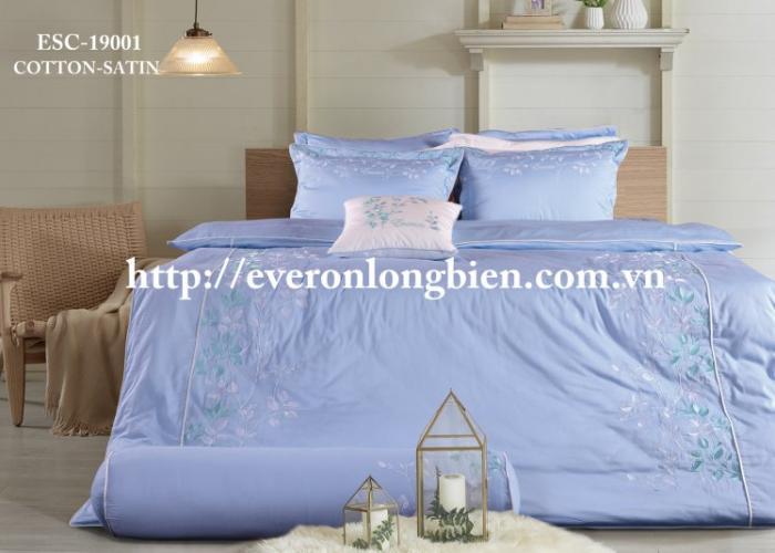 Everon ESC 19001