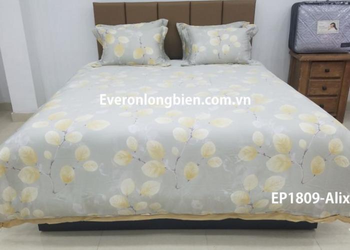 Everon ES1809- Alix