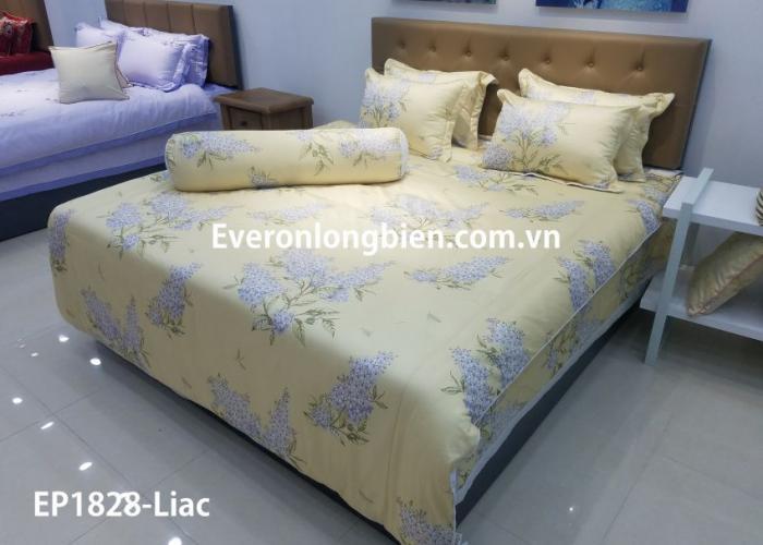 Everon EP1828- Lilac