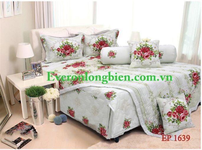 Everon-ep1639 (2)