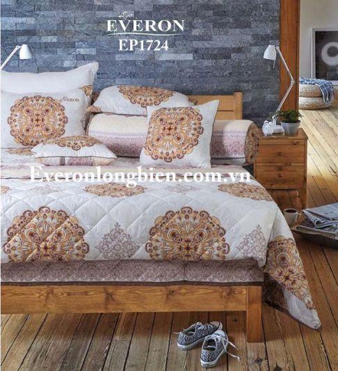 Everon-EP-1724 (1)