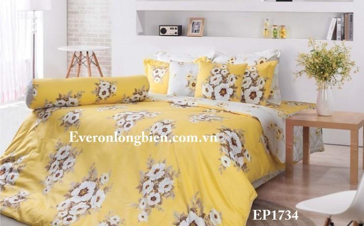 Everon-EP-1734 (2)