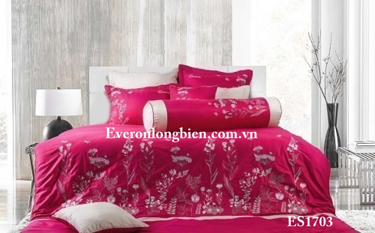 Everon-ES-1703