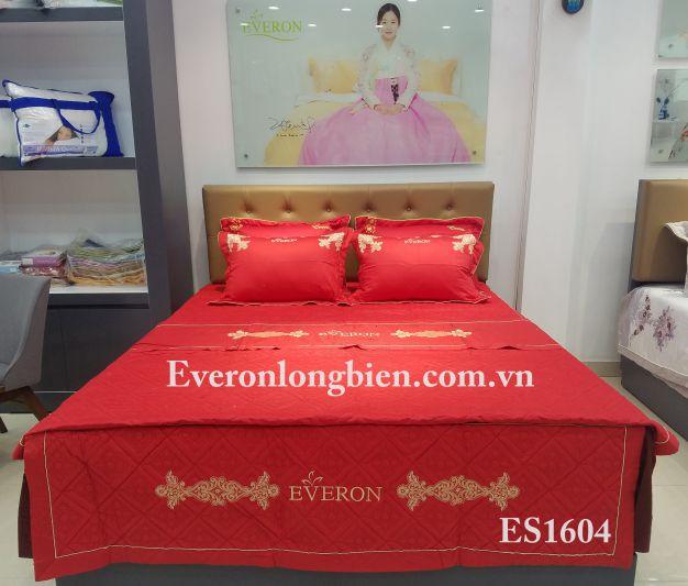 everon-es1604 (3)