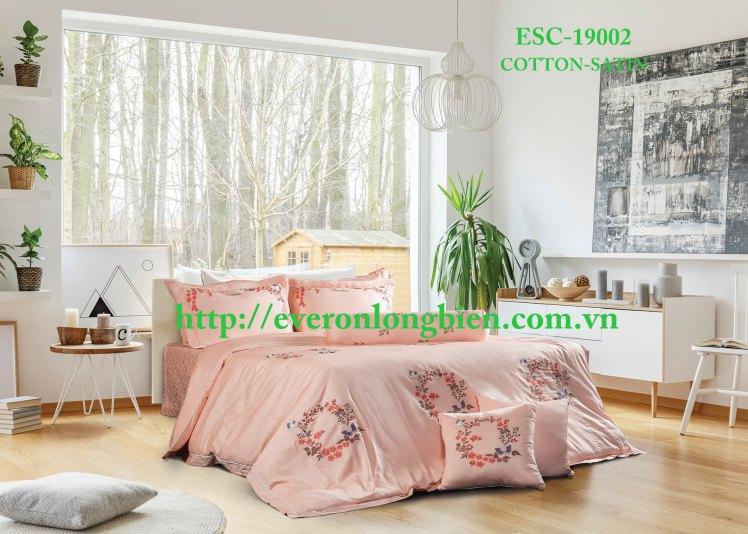 ESC-19002 (1)