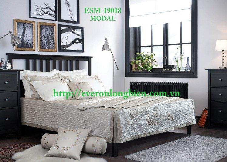 ESM-19018 (2)