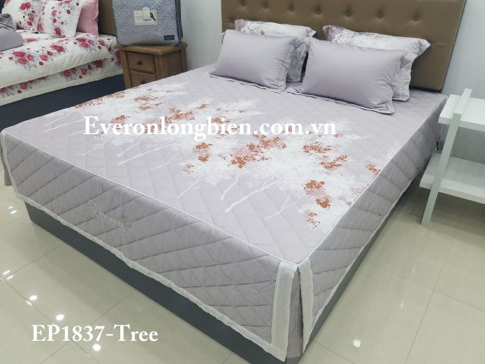 Everon-EP1837 (3)