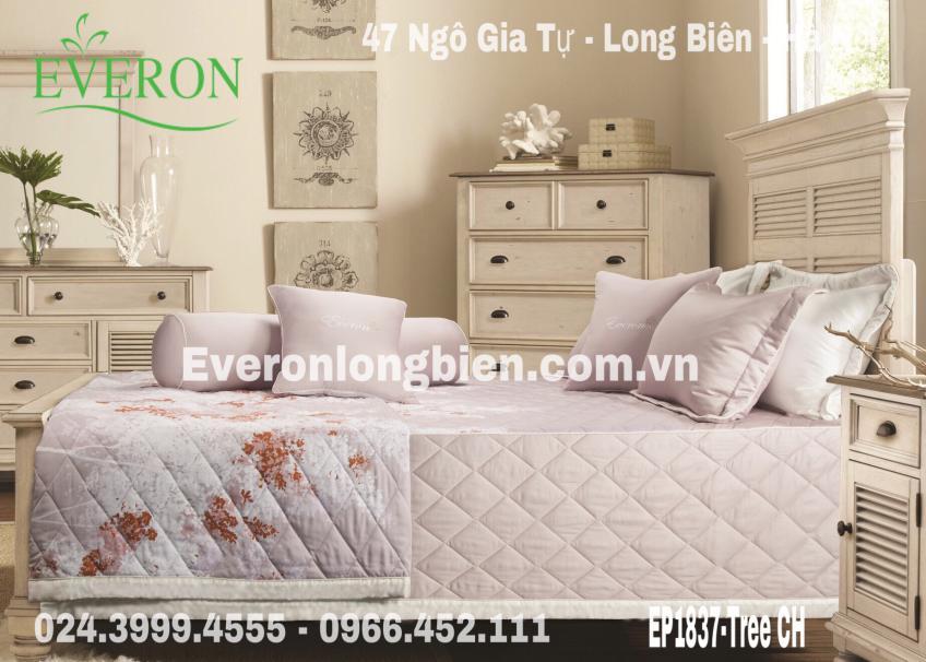 Everon-EP1837-CH