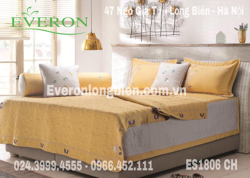 Everon-ES1806-ch