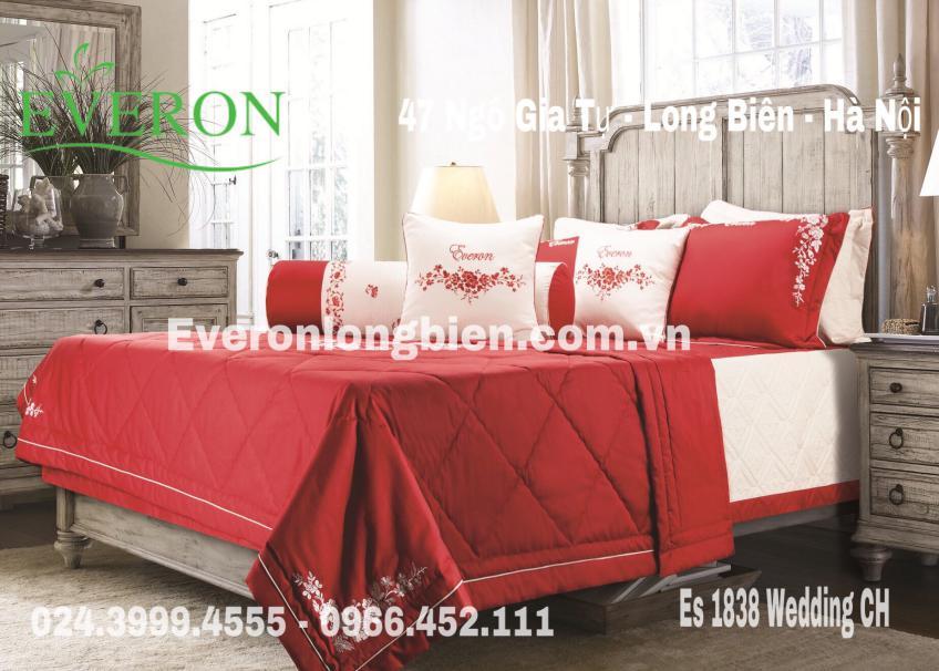 Everon-ES1838-Ch
