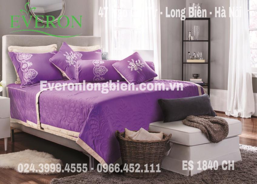 Everon-ES1840-CH