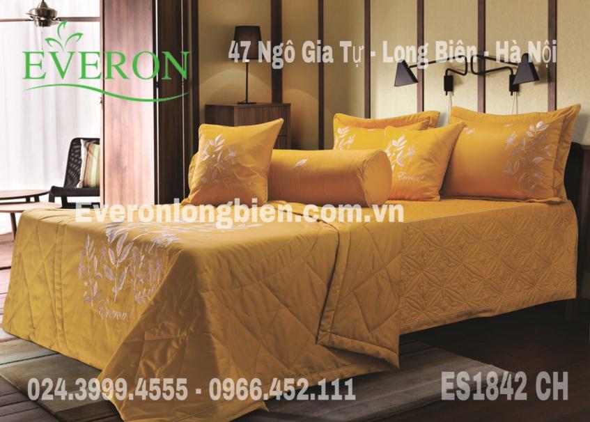 Everon-ES1842-CH