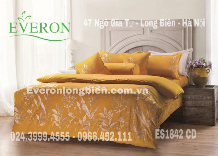 Everon-ES1842